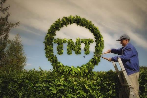 Channel ID (gardener)